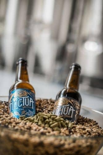 noctua-brewery-2